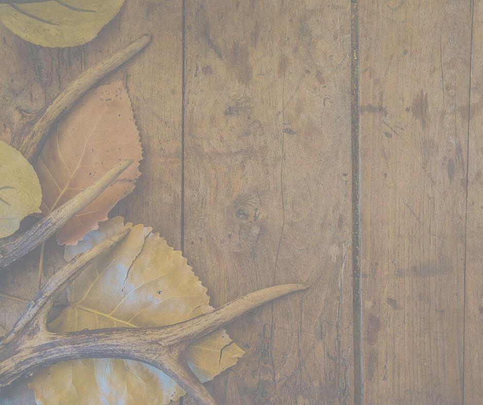 鹿角と木のバナー